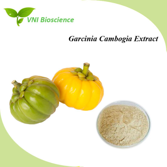 garcinia cambogia extract to lose weight