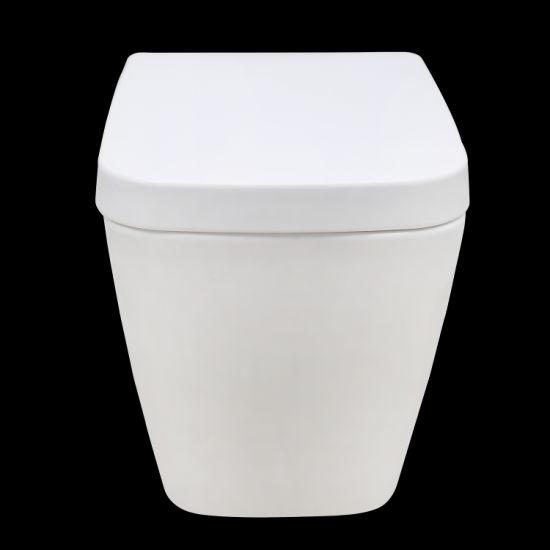 Amwc1301 Hot Sale Bathroom Sanitary Ware Washdown Wall-Hung Toilet