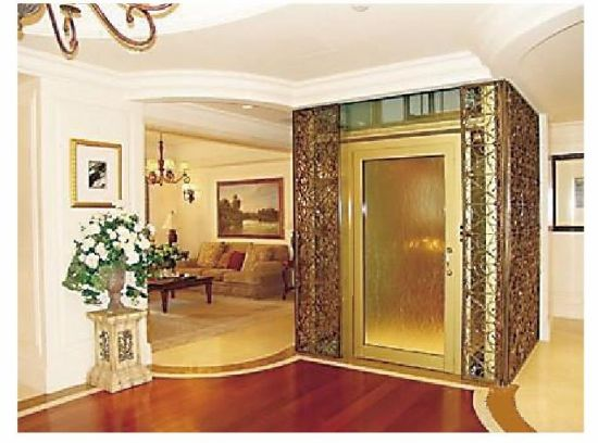 400kg House Elevator Vvvf Mrl Ll 110
