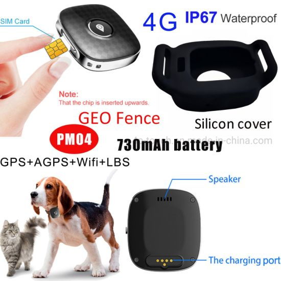 China factory 2021 New Quality 4G IP67 Waterproof Pets Dog Smart GPS Tracker with long Battery life PM04
