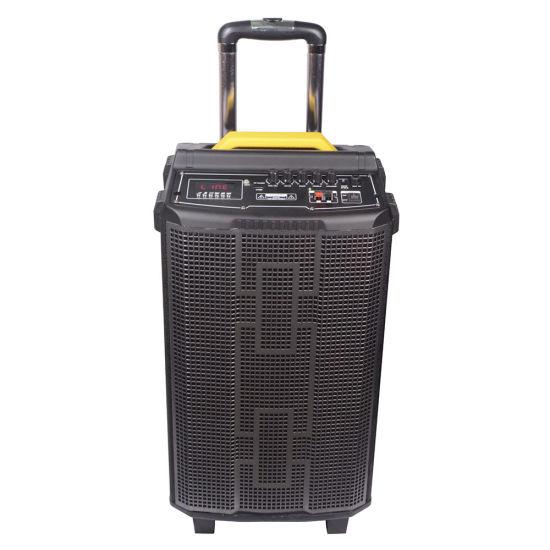 12inch Wooden High Power Bluetooth Hight Power Portable Speaker