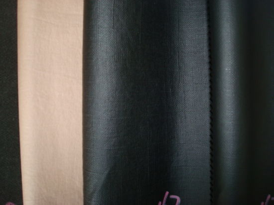 Coated Coating Cotton Fabric for Garment Use