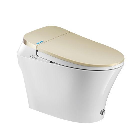 Superb China Family Bathroom Intelligent Temperature Control Bidet Uwap Interior Chair Design Uwaporg