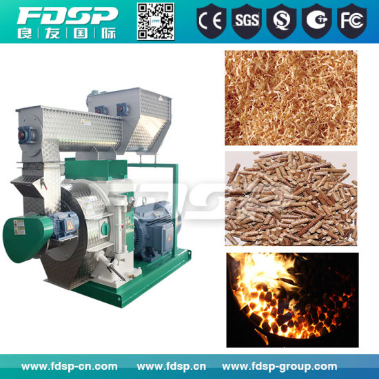 China Wood Shavings Pellet Machine with High Quality - China