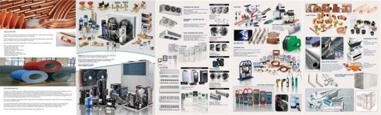 Electronic Component Cbb60 Capacitor pictures & photos