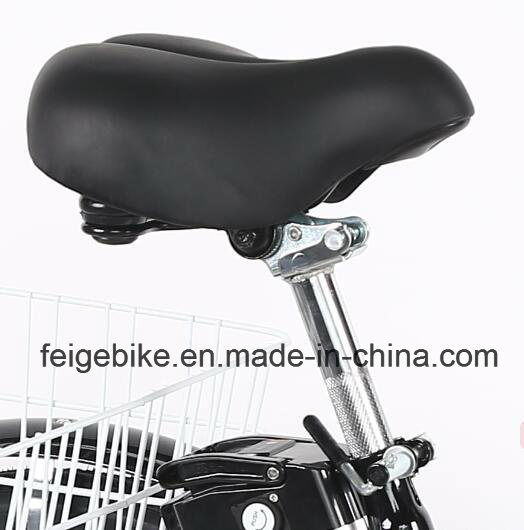 "Low Cross Frame Pedal-Assist 24"" Electric Tricycle for Cargo (FP-ETRK1807) pictures & photos"