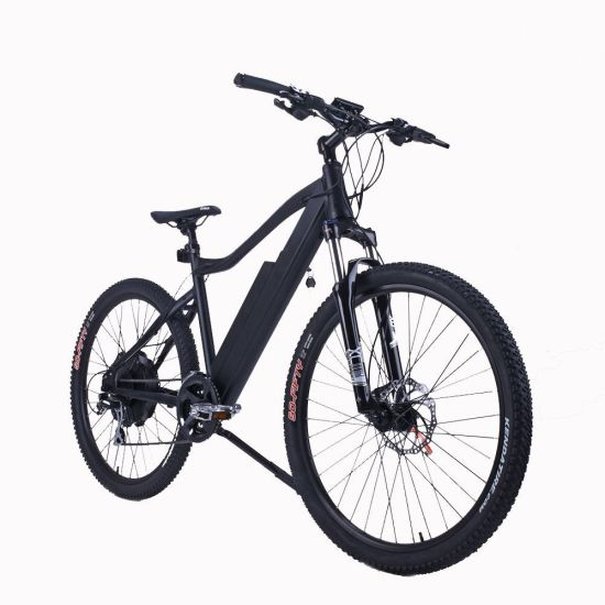2018 Popular Mountain Lithium Electric Bicycle pictures & photos