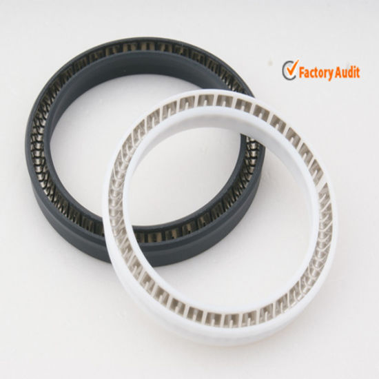 Filled Glass Fiber PTFE Spring Energized Seals pictures & photos
