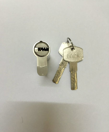 High Security Door Lock Cylinder/ Brass Cylinder Lock (CYL 06-01 SN) pictures & photos