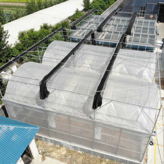 Hot-DIP Galvanized Plastic Greenhouses for Vegetables Flowers
