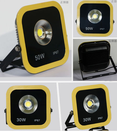 High Quality COB 30W Red Color LED Plaza Light/Lawn Light/Square Light/Warehouse Light/Hotel Light/Park Light/Garden Light LED Flood Light pictures & photos