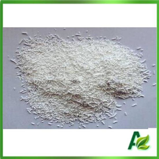 Feed Grade Coated Sodium Butyrate for Animal Attractive pictures & photos