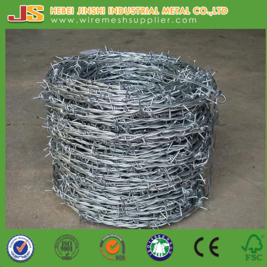 China Hot Dipped Galvanized Barbed Tape/ Twisted Fence Wire/ Barbed ...