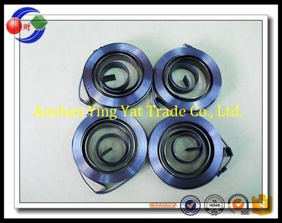 Flat Spiral Spring, Spiral Spring, Spring Manufacturer/Flat Clock Springs From Marina pictures & photos