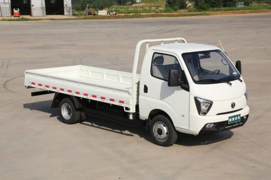 Waw 4*2 Gasoline Mini Cargo Truck for Sale pictures & photos