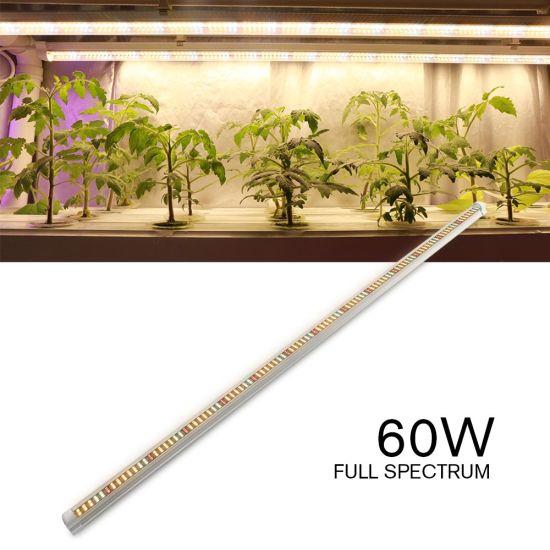 Lettuce Tomato Spinach Full Spectrum Hydroponic Shelves Led Grow Light
