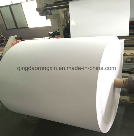 PE Coated Paper with Certification and Supply for Kfc pictures & photos