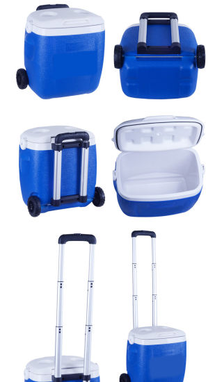 Best Quality Mini Trolley Cheap Cooler Bag for Outdoor Sports pictures & photos
