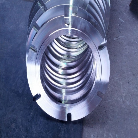 Non-Standard Special Stainless Steel Plate Flange