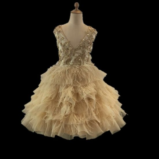 Gold Feather Sequin Lace Girl Dress Party Wear Fashion Garment