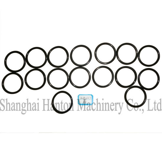China Cummins Nta855 Diesel Engine Part 3050667 Seal O Ring