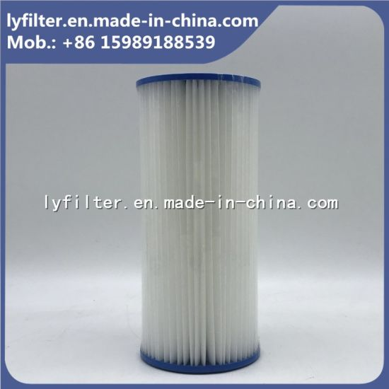 China Paper Pleated SPA Filter Cartridges for Swimming Pool ...