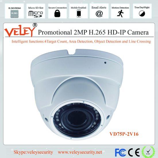China CCTV Dome Camera Network Hikvision IP Camera HD
