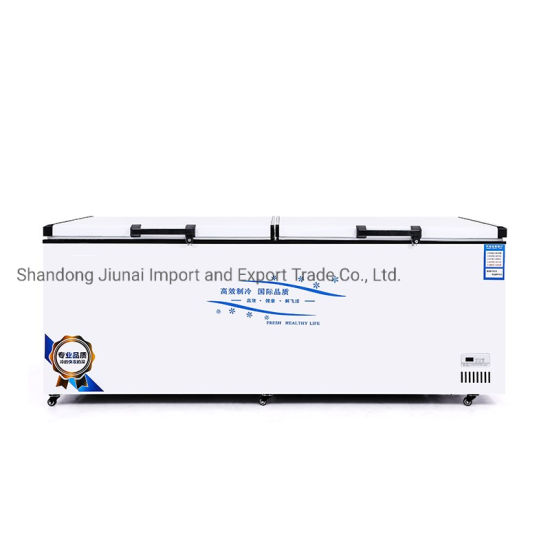 Double Door Commercial Large Capacity Freezer Refrigerator Freezer Energy Saving