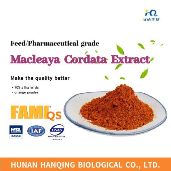 High Purity 70%, Feed Grade Macleaya Cordata Extract pictures & photos
