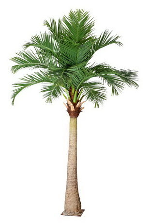 Artificial Plants & Flowers of Coco Palm
