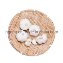 Fresh Normal White Garlic/Pure White Garlic