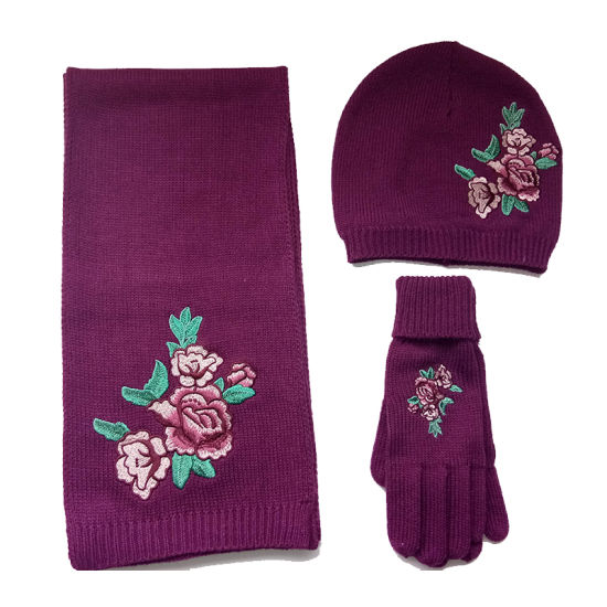 Lady Fashion Knittnig Floral Embroidery Glove Hat Scarf Set