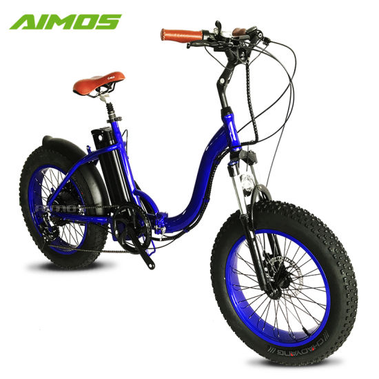 Wholesale Price 20 Inch Fat Bicycle Folding electric Bike pictures & photos