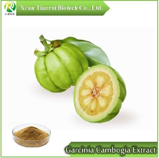 Garcinia Cambogia Extract 10 1 Extract Powder China Garcinia