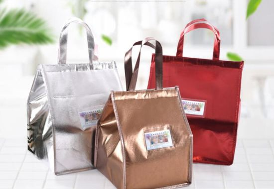 Wholesale Non Woven Cooler Bags with Customized Logo