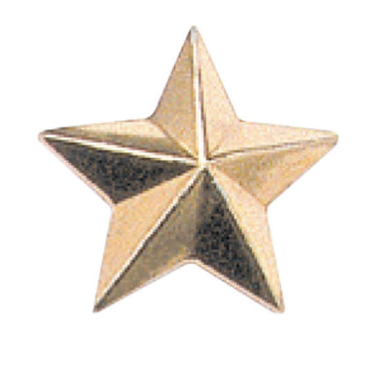 Gold Plated Dia Casting Metal Alloy Military Insignia Police Cap Star Badge