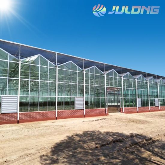 China Manufacturer Agriculture Single Layer Glass Greenhouse with Ventilation System for Cucumber/Lettuce/Tomato Planting