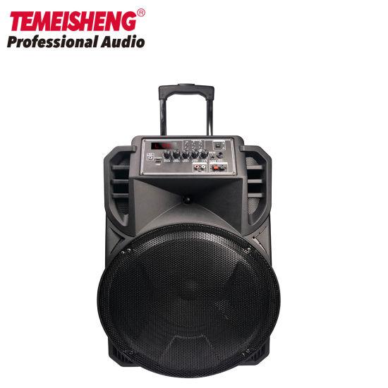 Temeisheng 15 Inch Bluetooth Powerful Trolley Speaker