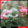 Hanging Clear Flat-Bottomeddia 8 Cm Crystal Glass Vase Flower Balls Terrarium Decoratives Vases pictures & photos