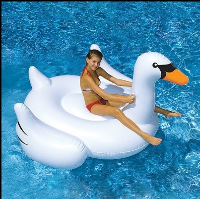 PVC Inflatable White Swan Pool Floats, Floats Stick, Floats Pool pictures & photos