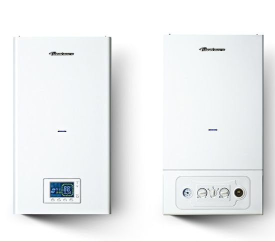 China Wall Mounted Gas Boiler Hot Water Heater - China Wall Mounted ...