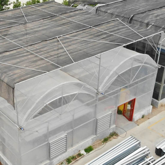 Vertical Farming Greenhouse with Seed Bed Nets