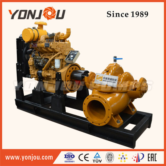 China Double Suction Centrifugal Petrochemical Products Pump S, Sh