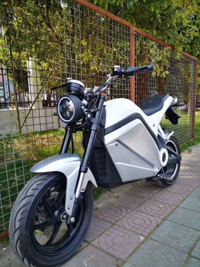 Electric Motorcycle with Powerful Motor Fast Speed Green Energy