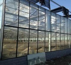 Hot-DIP Galvanized Frame Vegetable Planting PC Sheet Glass Greenhouse Mushroom House Tomato House