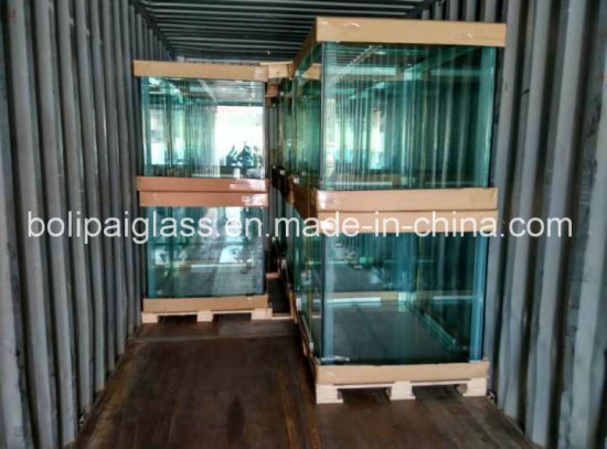 Good Quality Customized Animal Glass Tank pictures & photos
