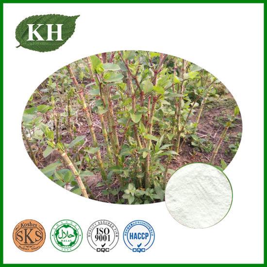 Resveratrol From Polygonum Cuspidatum Root Extract Can Anti-Oxidant
