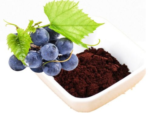 Purchase Grape Seeds Extract OPC 95% 100% Natural Grape Seeds Extract