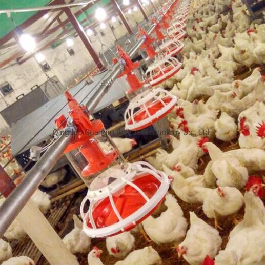 High Quality Automatic Broiler Farm Equipment