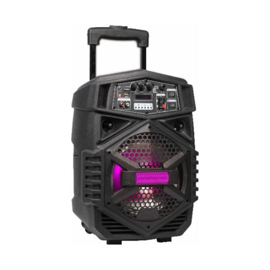 New Design 3.7V 2200 mAh Li Battery Te8-7L Temeisheng 8 Inch Portable Wireless Bluetooth Speaker